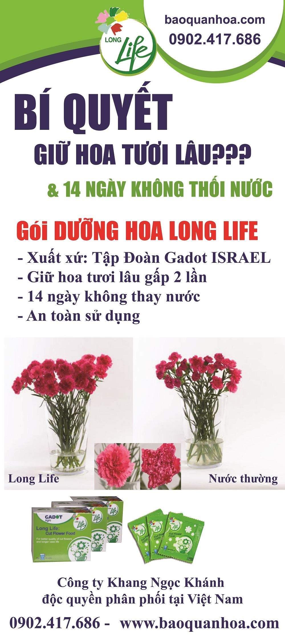 dinh-duong-hoa-long-life