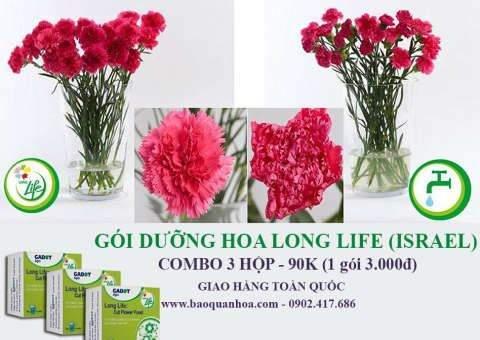 goi-duong-hoa-long-life-israel