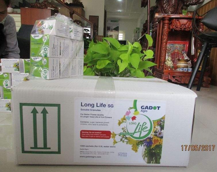 goi-duong-hoa-long-life-si 4