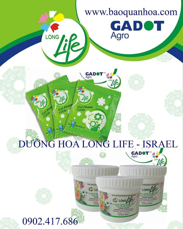 duong-hoa-tuoi-longlife-hop 1 KG.1