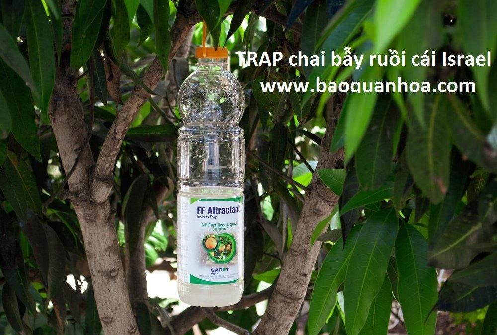 trap-cha-bay-ruoi-cai-israel