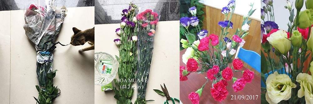 kinh-nghiem-giu-hoa-tuoi-lau-8456