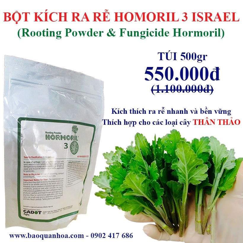 BOT-KICH-RA-RE-HORMORIL3-ISRAEL-DANH-CHO-HOA-CUC